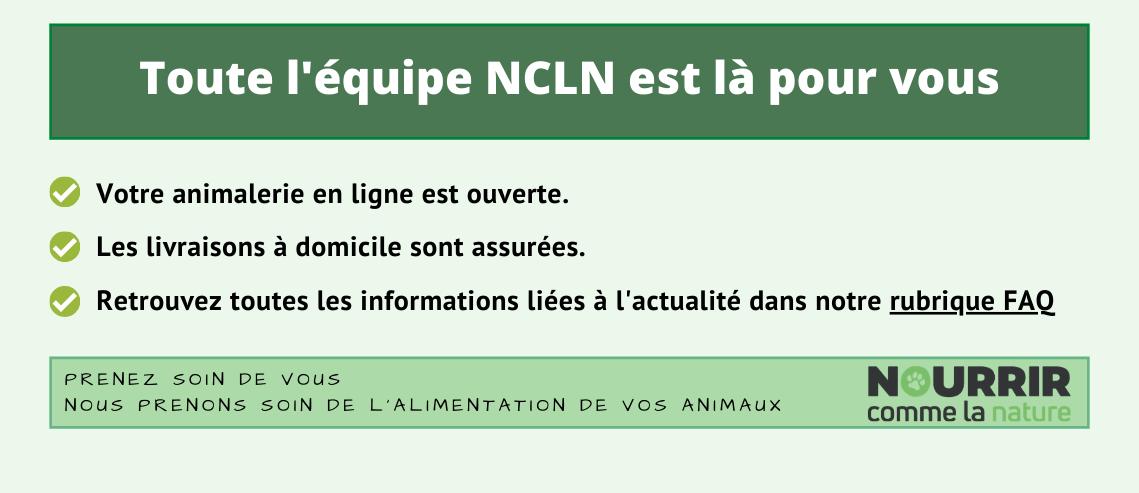 Toute l'équipe NCLN est là pour vous