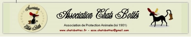 ASSOCIATION CHATS BOTTES   protection féline