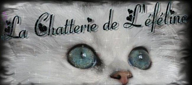 CHATTERIE DE L' EFELINE