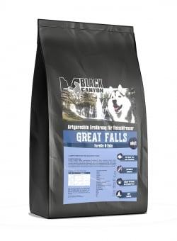 GREAT FALLS - truite/canard