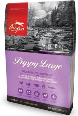 PUPPY LARGE BREED