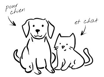 Alimentation pour chien et chat